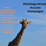 celebrity campaigns