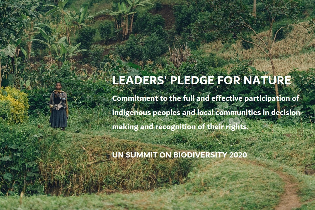 LEADERS PLEDGE FOR NATURE