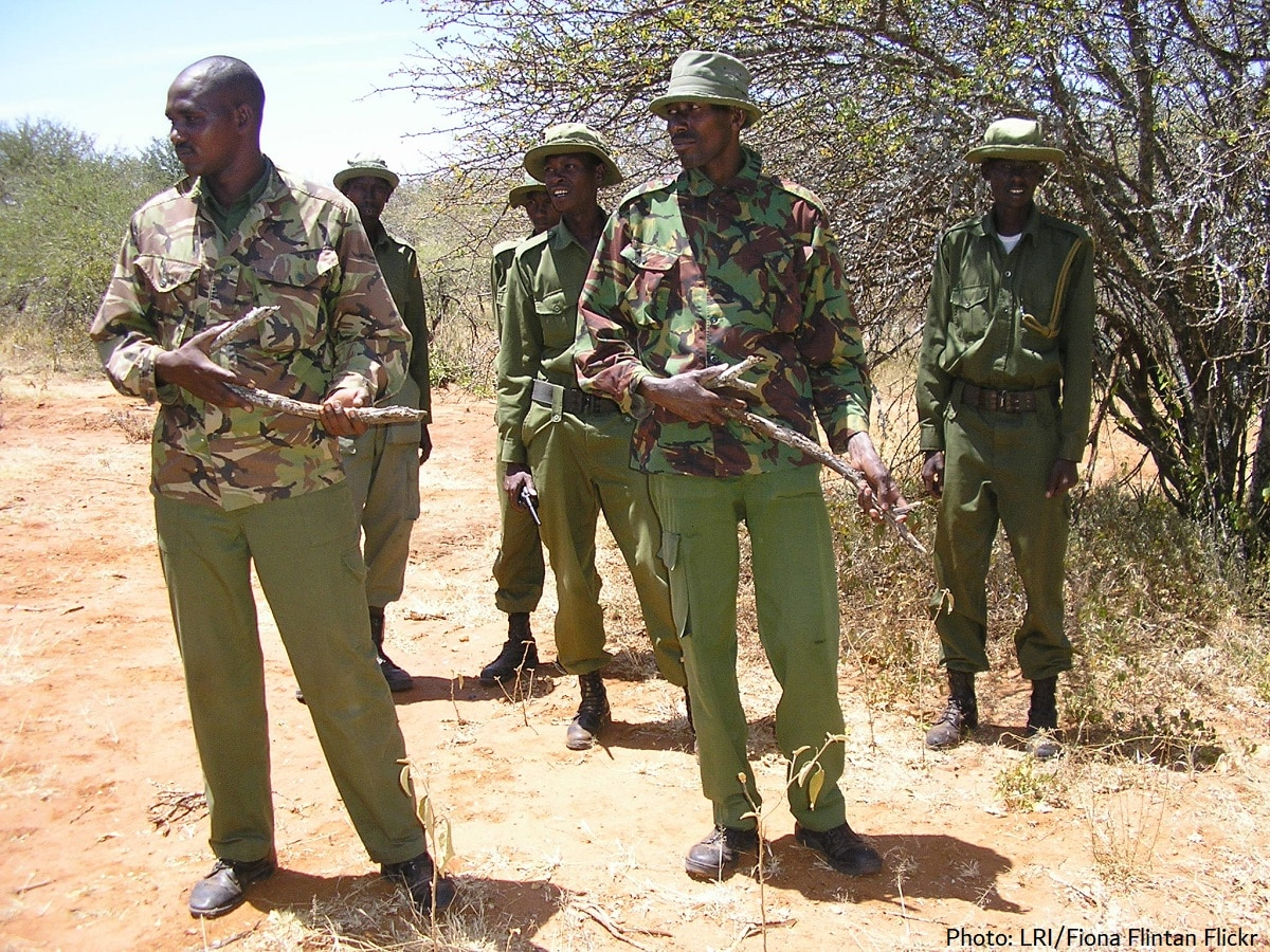 African conservation