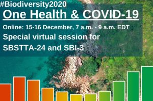 """CBD virtual session under the theme """"Biodiversity, One Health and responses to COVID19"""