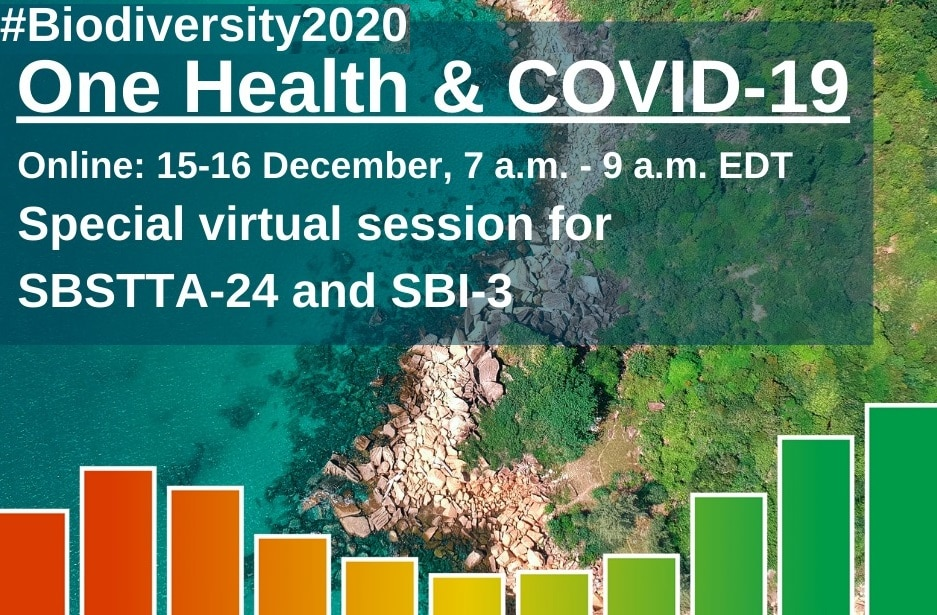 "CBD virtual session under the theme ""Biodiversity, One Health and responses to COVID19"